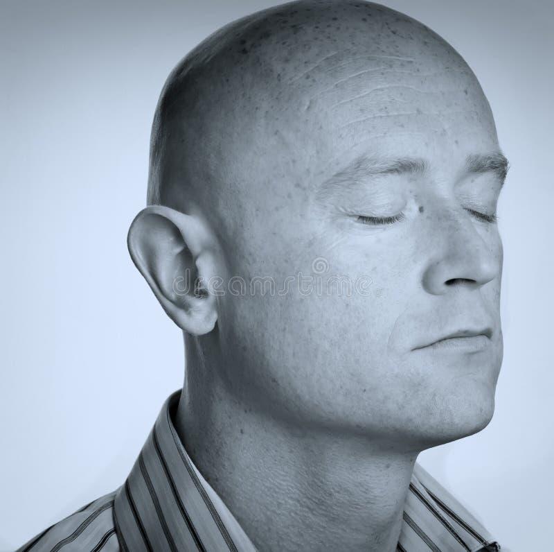 Chiuda sulla testa calva rasa maschio fotografie stock libere da diritti