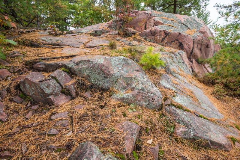 Chiuda sulla vista delle strutture geologiche al parco provinciale di Killarney fotografia stock libera da diritti