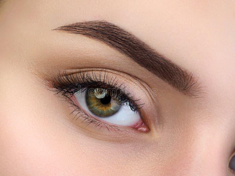 Chiuda sulla vista di bello occhio femminile marrone fotografie stock