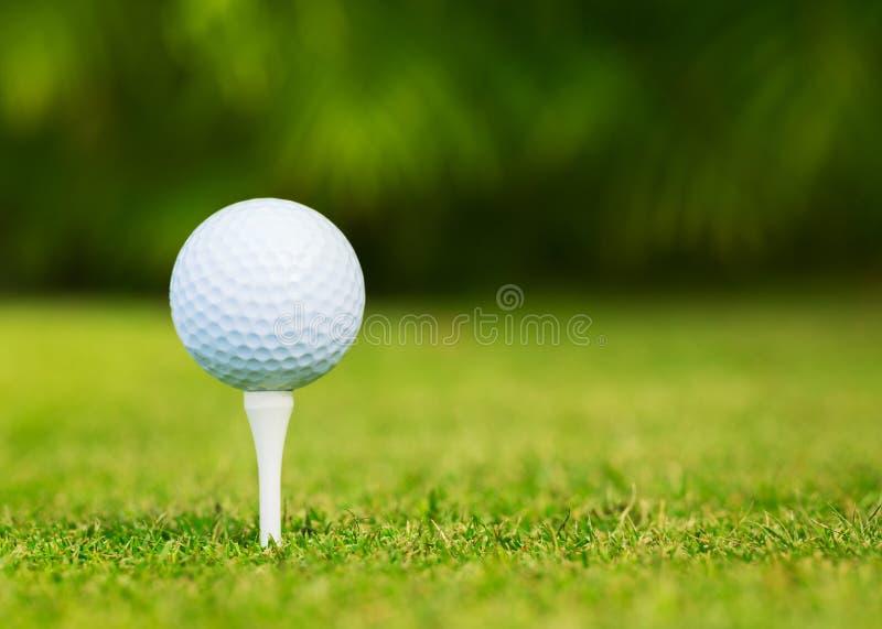 Chiuda sulla vista di palla da golf sul T fotografie stock