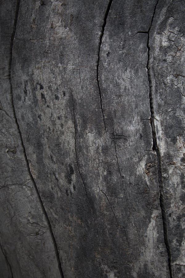 Chiuda sulla vista di vecchio fondo di legno di struttura immagini stock libere da diritti