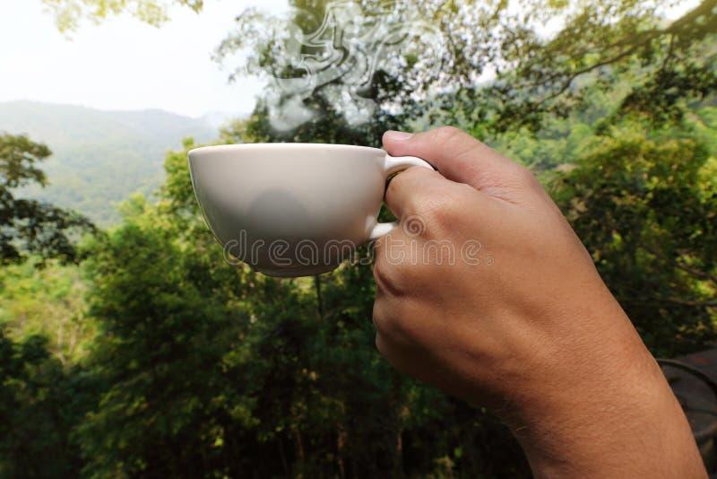 Chiuda sulle mani di giovane tazza di caffè turistica della tenuta nel bello fondo della natura di mattina immagini stock libere da diritti