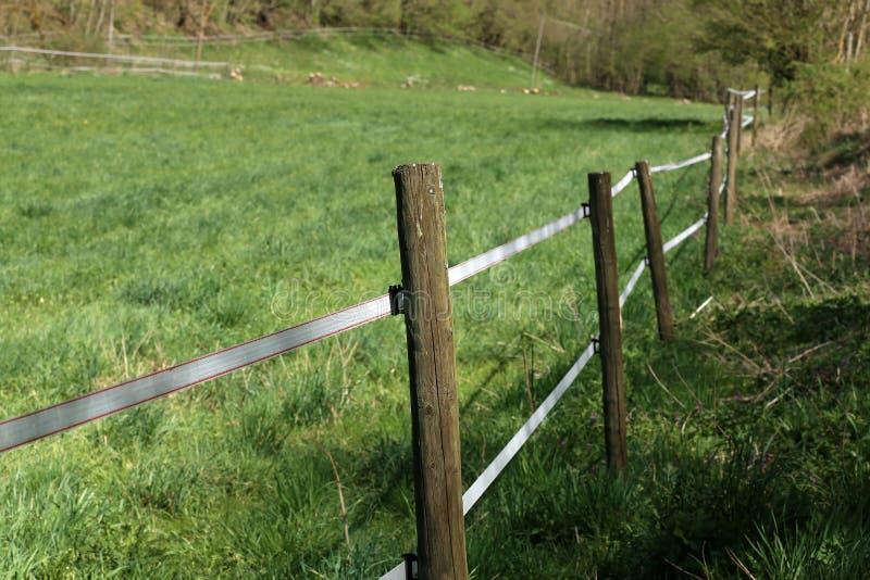 Chiusura di una recinzione di filo elettrico intorno a un pascolo immagini stock libere da diritti