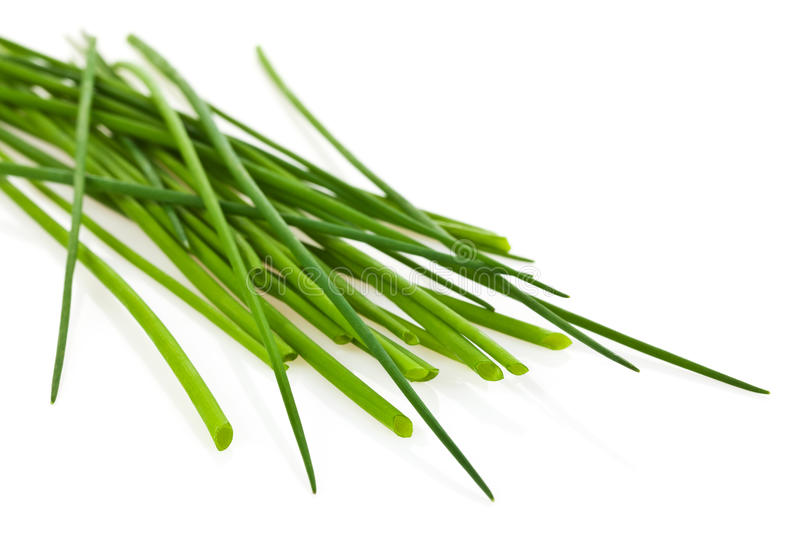Chives. A pile of chives on white background stock image
