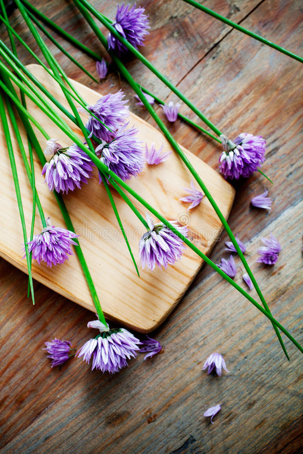 Free Chives Stock Photography - 31675372