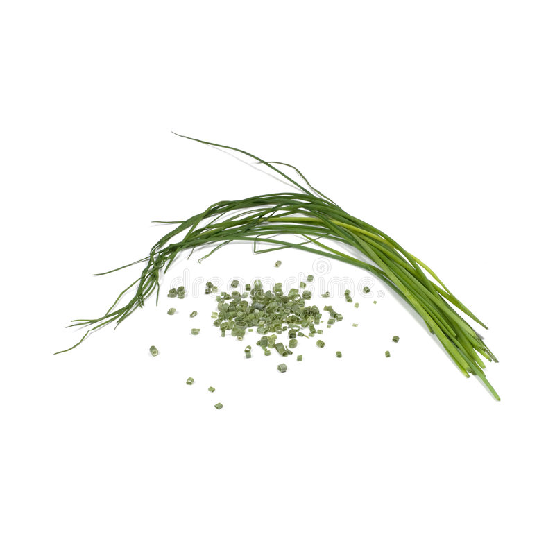 Chives. One in a series of twelve natural herbs, showing Chives in their fresh from the plant form, and their dried/crushed form, as you'd see them in the spice royalty free stock photo