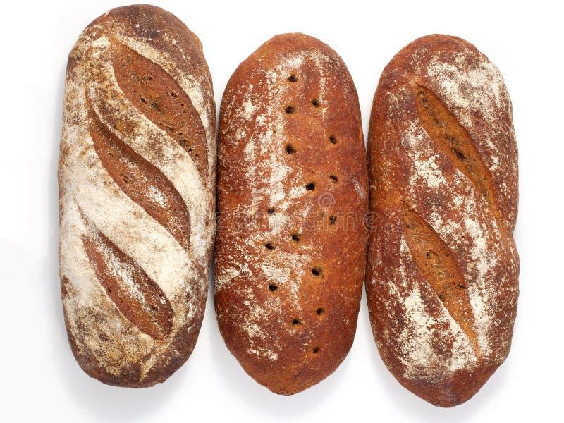 Chleb - raye sourdough chleb, kilka bochenki w pobliżu zdjęcie royalty free