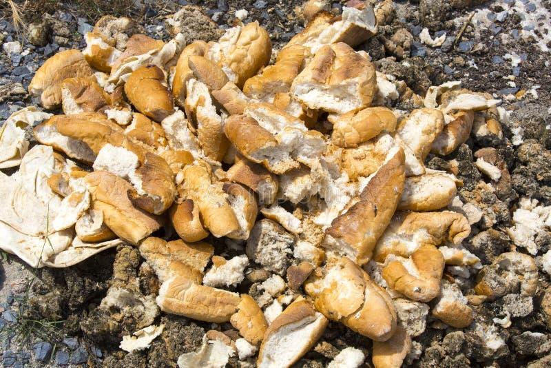 Chleb rzucający w gracie zdjęcie royalty free