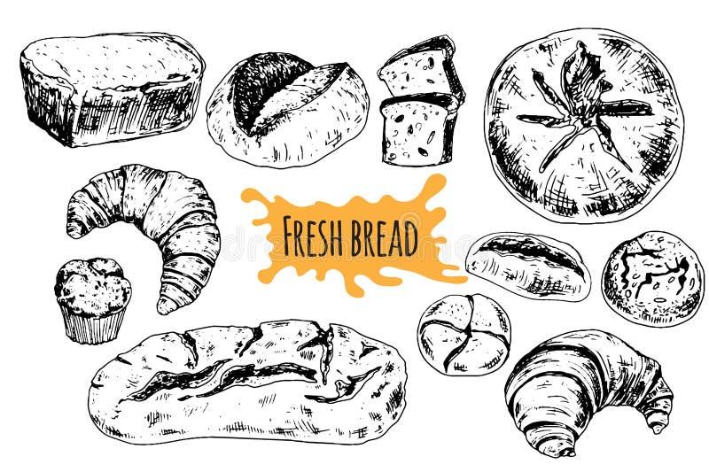 Chlebowa wektorowa ręka rysująca ustalona ilustracja ilustracji