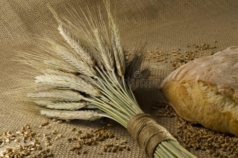 chlebowy domowej roboty zdjęcia royalty free