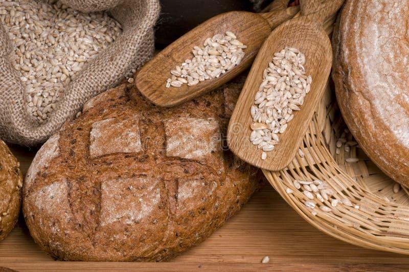 chlebowy karmowy świeży fotografia royalty free