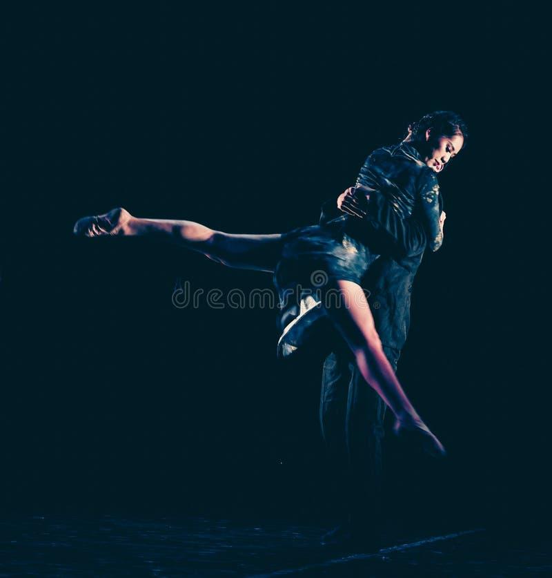 Chmielny tango 6--Tana dramata osioł dostaje wodnym obrazy royalty free