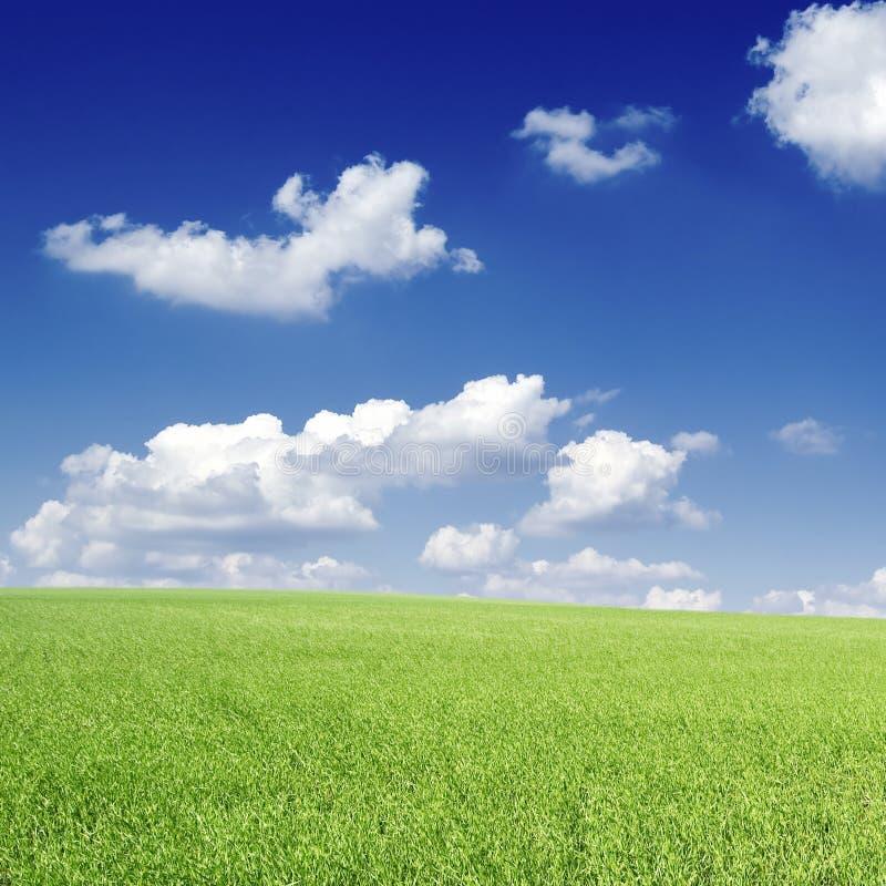 chmur pola obrazy stock