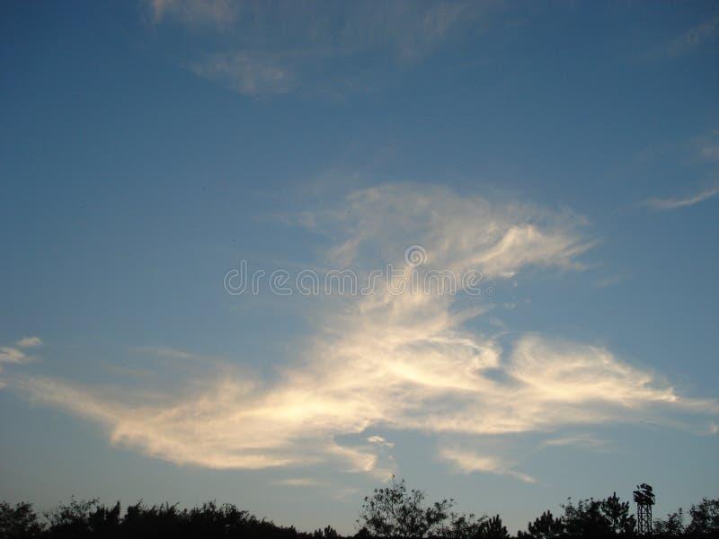 Chmura kształtował jak gigantyczny smok lub ptak fotografia stock