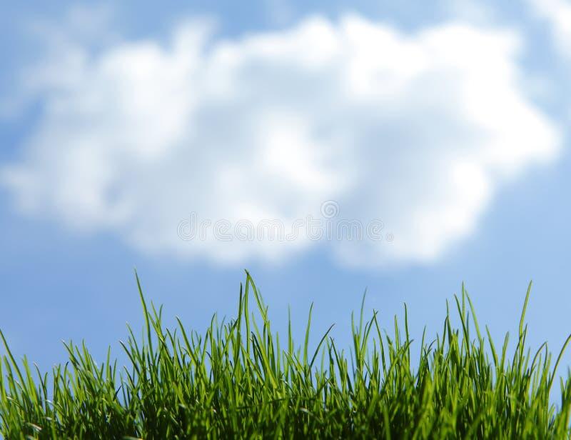 Chmura nad świeżą trawą obraz royalty free