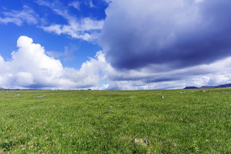 Chmurny niebo nad tundrą zdjęcie stock