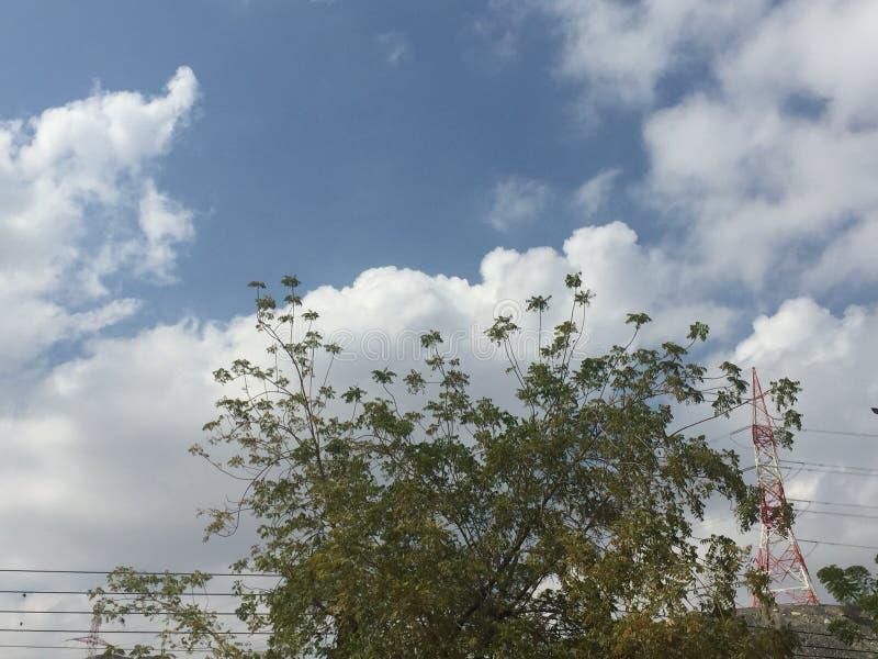 Chmury drzewo i antena fotografia royalty free