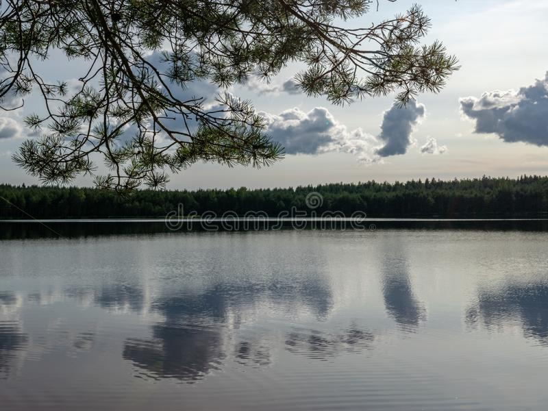 Chmury i lasowy odbijać obrazy stock