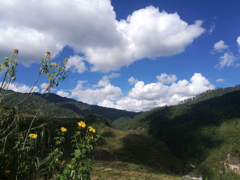 Chmury i rolka zdjęcia stock