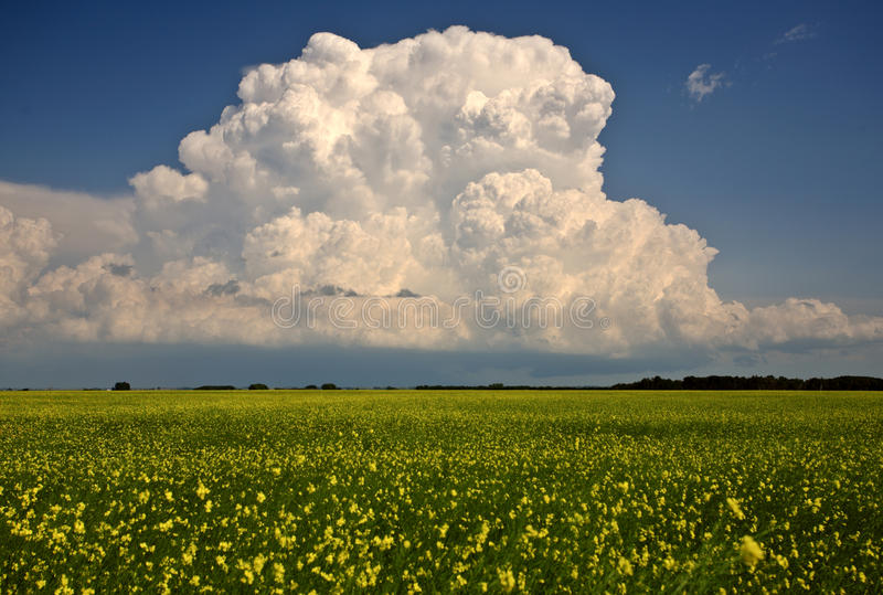 chmury nad Saskatchewan burzą obrazy stock