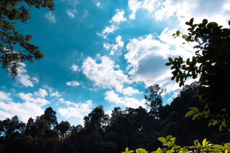 Chmury przy Khao Yai fotografia royalty free