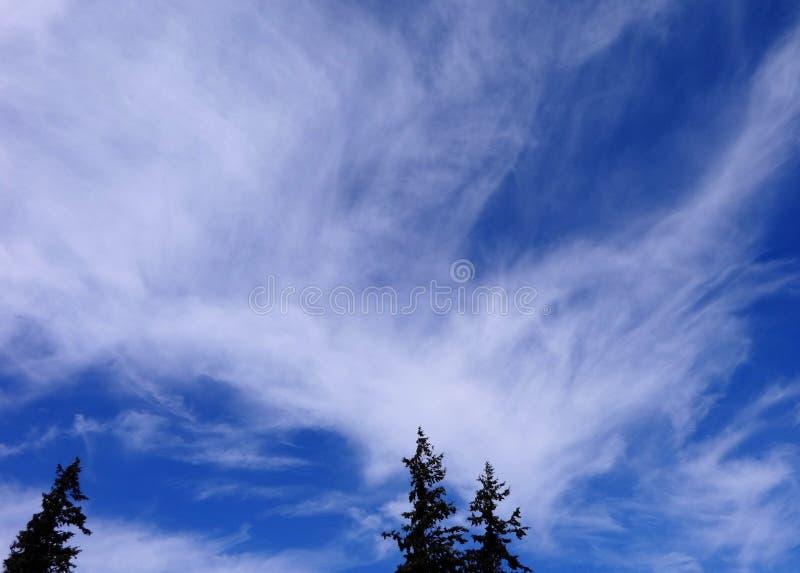 Chmury rusza się szybko w jesieni niebie zdjęcie stock