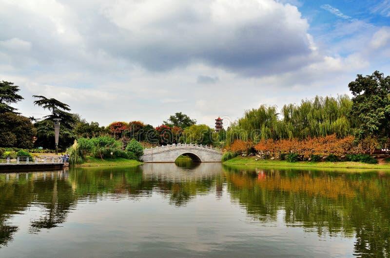 Chnese trädgård royaltyfri foto