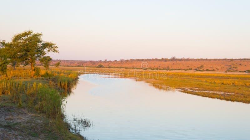 Chobe rzeki krajobraz, widok od Caprivi paska na Namibia Botswana granicie, Afryka Chobe park narodowy, sławna wildlilfe rezerwa  zdjęcie stock