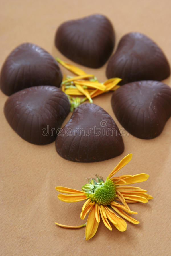 Download Choc stock image. Image of creamy, choc, nutritious, luscious - 12264389