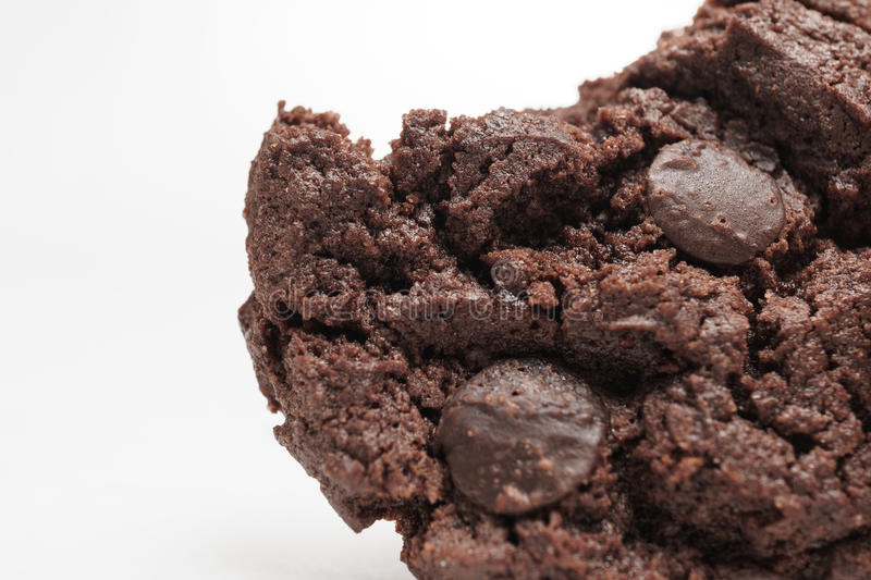 Choc Chip Cookie. A tasty double choc chip cookie royalty free stock photography