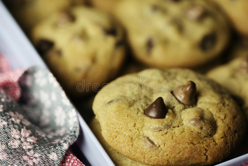 Choc chip cookies royalty free stock photography