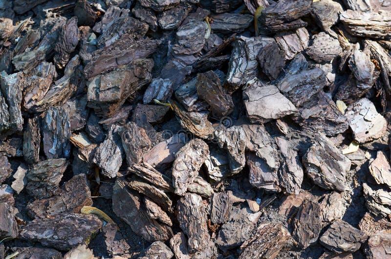 Chochoł barkentyna wokoło drzewnego tła dla wilgotnościowej retenci obrazy stock