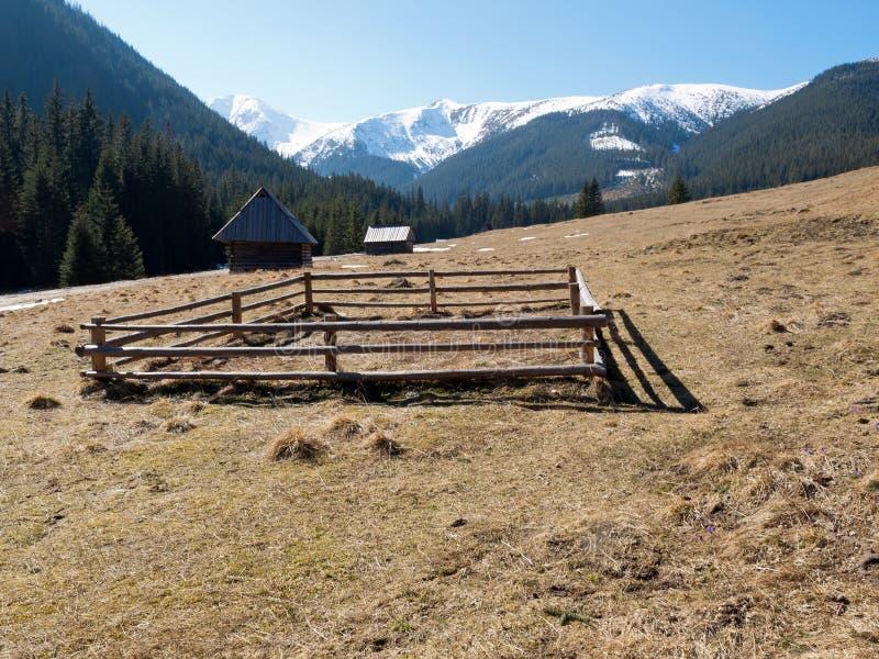Download Chocholowskavallei In Het Westen Tatras, Stock Foto - Afbeelding bestaande uit platteland, seizoen: 39105114