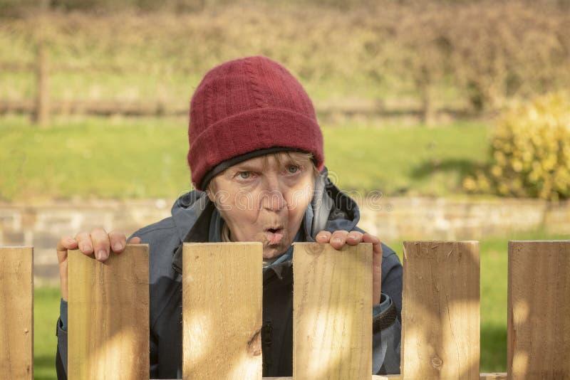 Chockad mogen kvinna som ser över staketet royaltyfria bilder