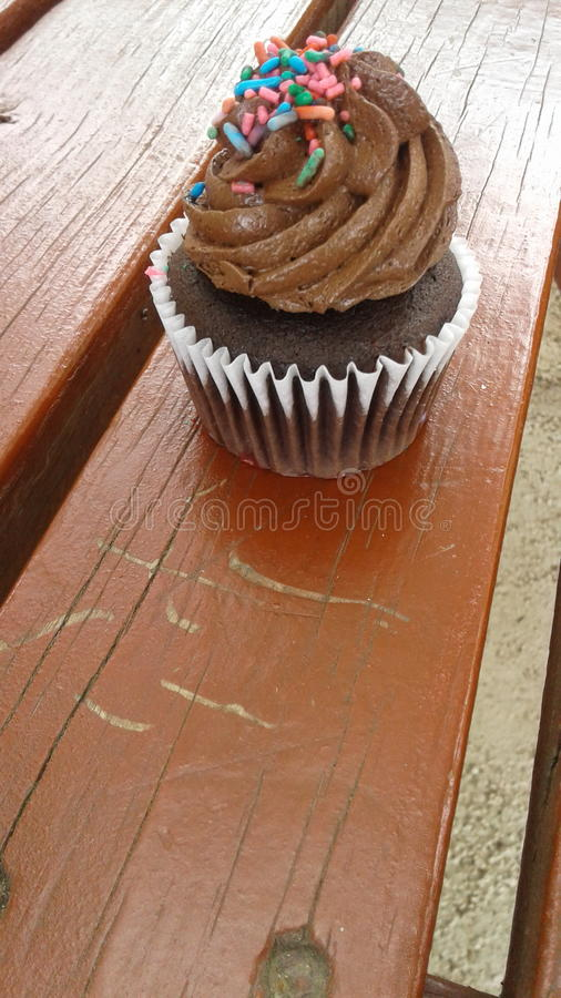Choco cupcake stock photo
