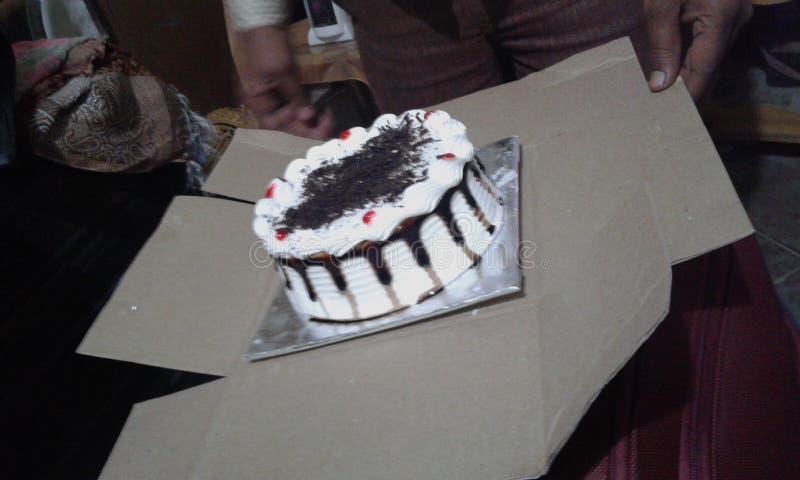 Choco de la torta delicioso fotografía de archivo libre de regalías