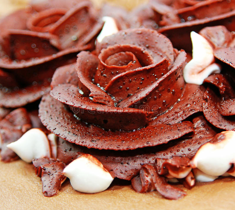 Choco Flower. Close up of decorative brown flower chocolate frosting on cake royalty free stock photo