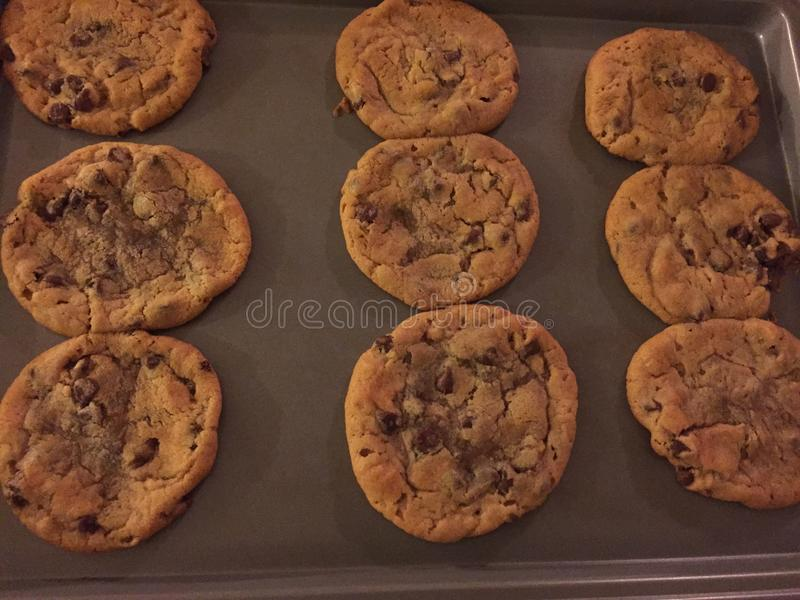 Chocolade Chip Cookie stock foto's