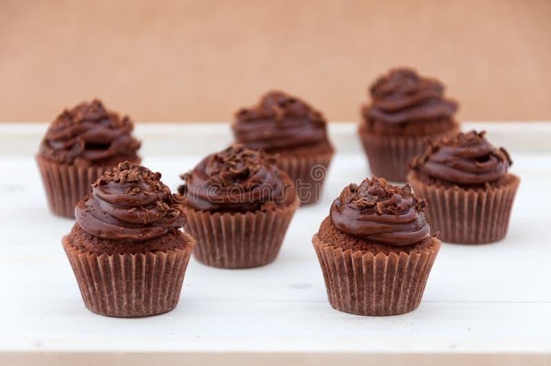 Chocolade cupcakes royalty-vrije stock foto's