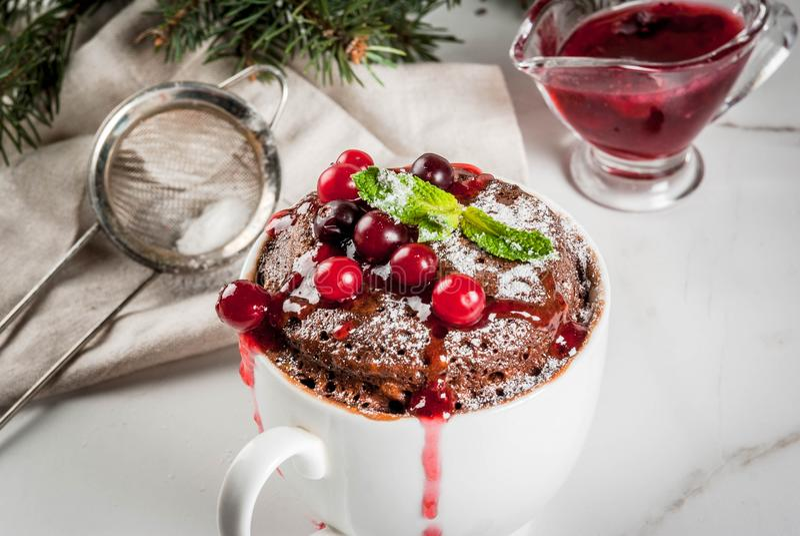 Chocolade mugcake met Amerikaanse veenbes royalty-vrije stock afbeelding