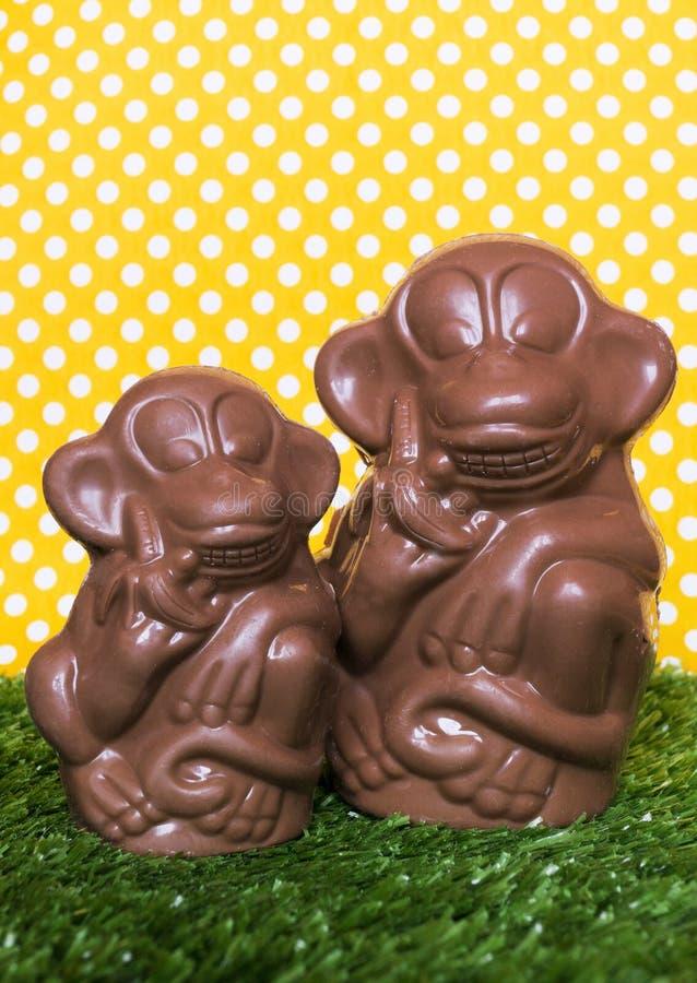 Chocoladeaap op het gras royalty-vrije stock foto's