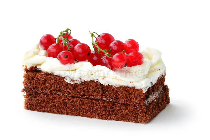 Chocoladebiscuitgebak met rode aalbes stock fotografie