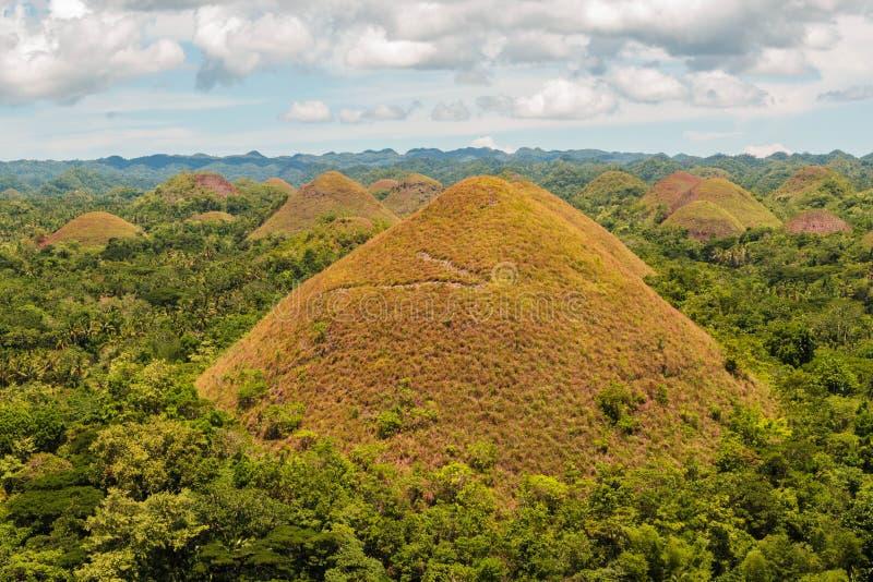Chocoladeheuvels in Bohol, de Filippijnen Chocoladeheuvels in Bohol, de Filippijnen Verbazend landschap van honderden bruine heuv royalty-vrije stock fotografie