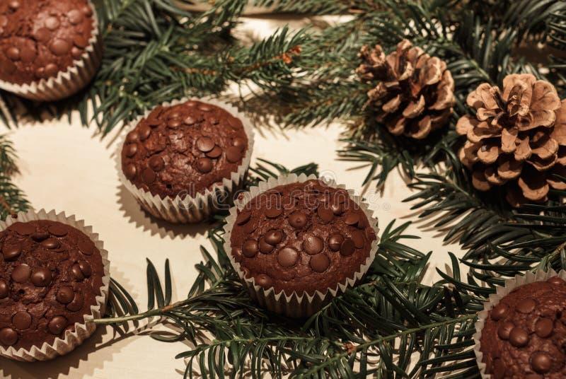 Chocoladeschilfer vijf cupcakes met pijnboomtakken en kegels op de achtergrond stock afbeeldingen