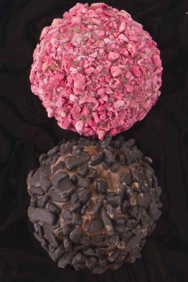 Chocoladetruffel met praline royalty-vrije stock fotografie