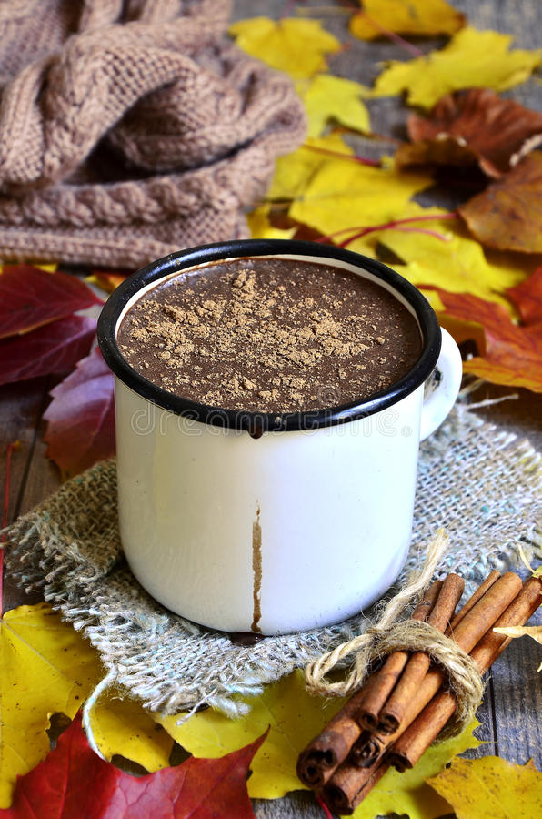 Download Chocolat Chaud Sur Le Fond D'automne Image stock - Image du dessert, chocolat: 45358921