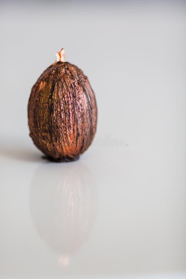 Chocolat fait main avec l'oeuf de p?ques d'or Plan rapproch? image stock
