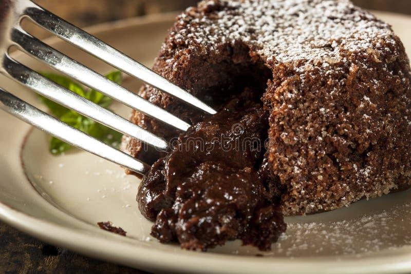 Chocolat fait maison Lava Cake Dessert photographie stock libre de droits