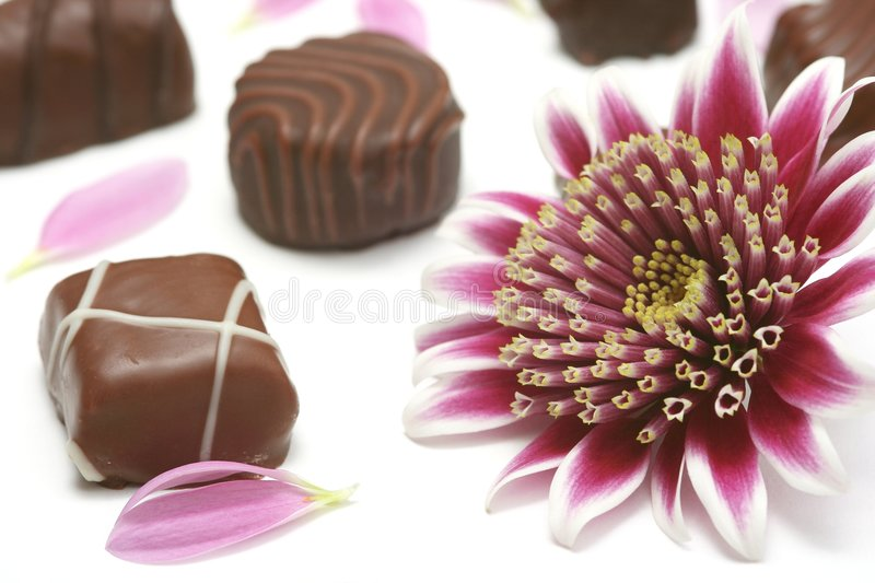 Download Chocolate stock photo. Image of delicious, daisies, anniversary - 5095288