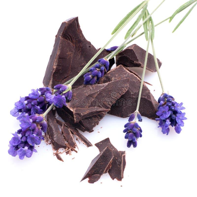Chocolate, alfazema foto de stock